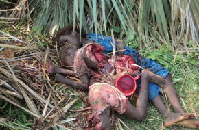 Report from Nuba Mountains: many will die, many...